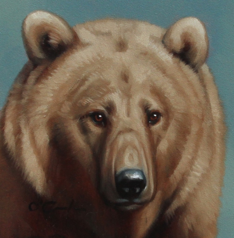 Jennifer O'Cualain - Grizzly Portrait